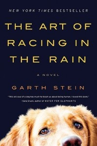 Racing in Rain